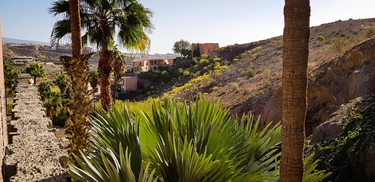 Heitere Tage und Kampagnen-Vorbereitungen auf Gran Canaria
